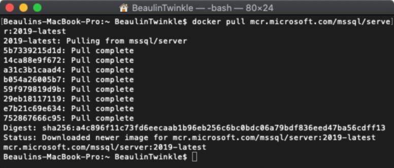 Pull the latest SQL Server Docker image