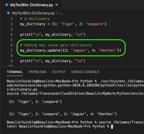 Adding Key Value Pair To A Python Dictionary using update() method