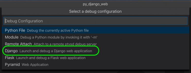Selecting debugger