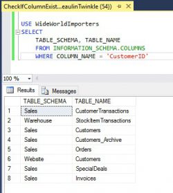 Check If Column Exists In SQL Server Table 05