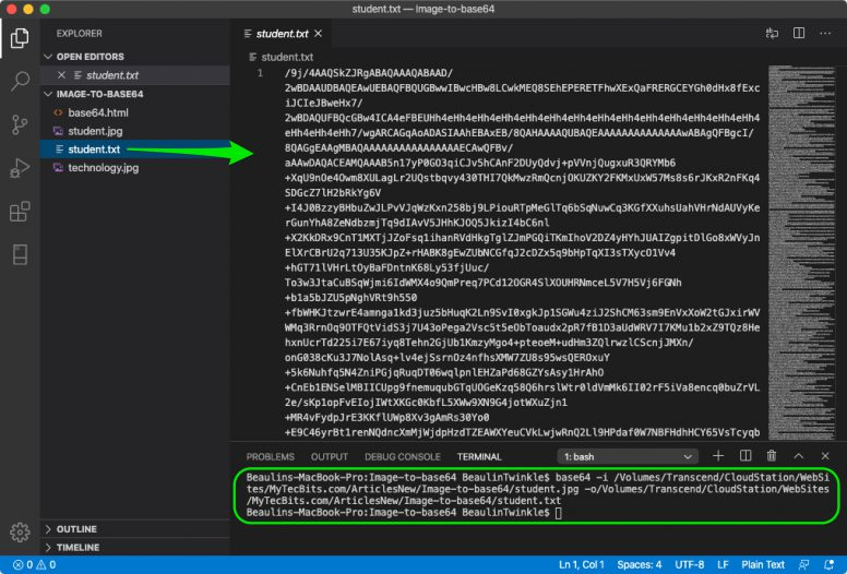 Convert Image to base64 in Visual Studio Code on macOS