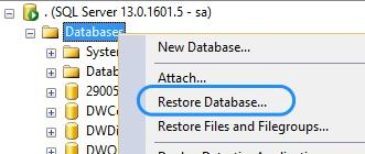 WideWorldImporters Sample Database Restoration