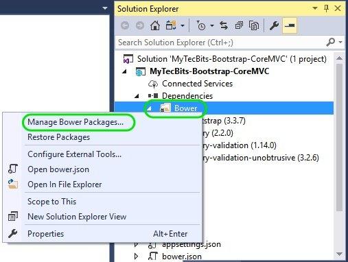 Bootstrap In ASP.NET Core MVC 04